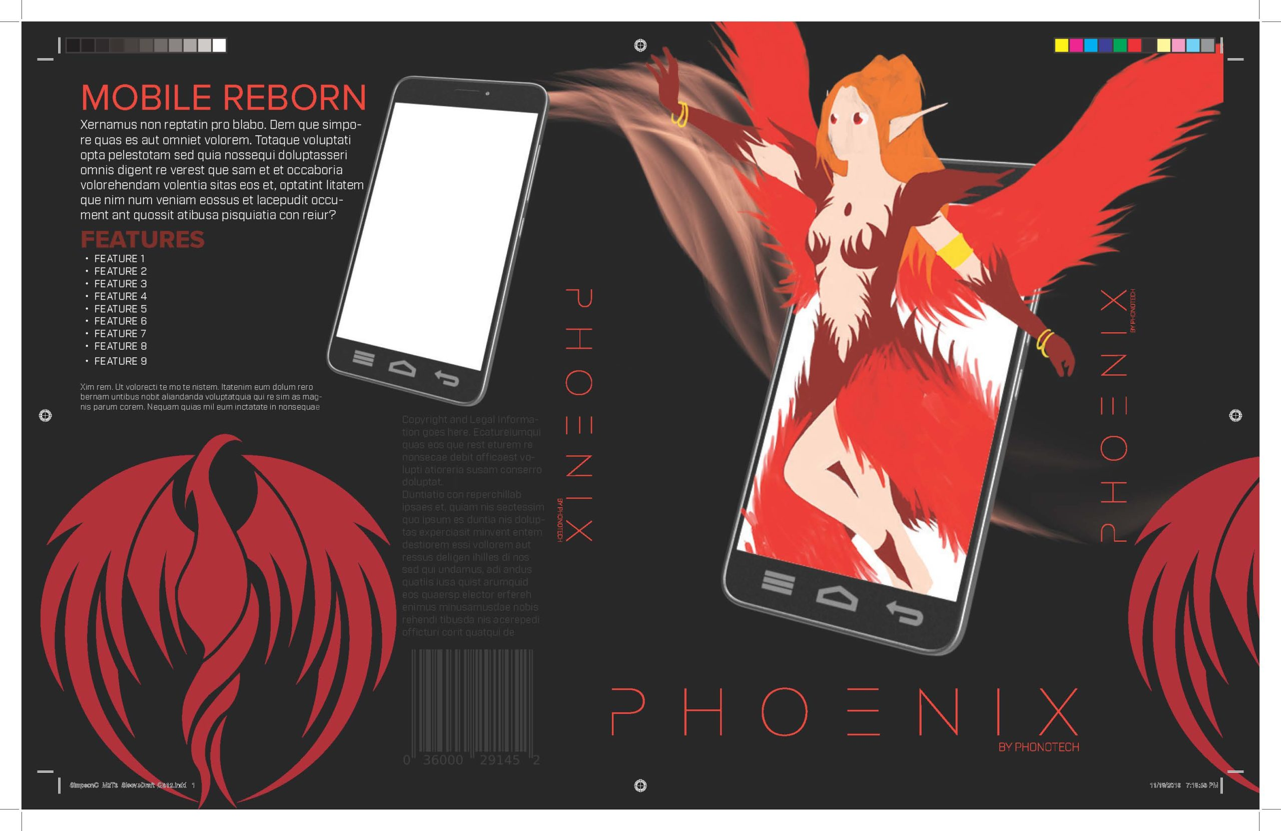 Phoenix Packaging Rough Draft
